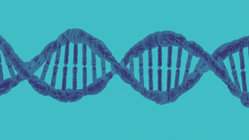 DNA for Data Storage and Retrieval